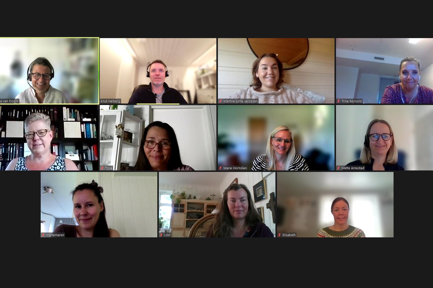 skjermdump av zoom videomøte som viser alle deltakere